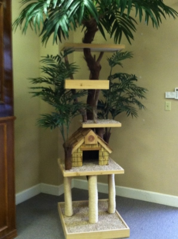 Custom/Special Needs Trees - Palm Tree with house elevated